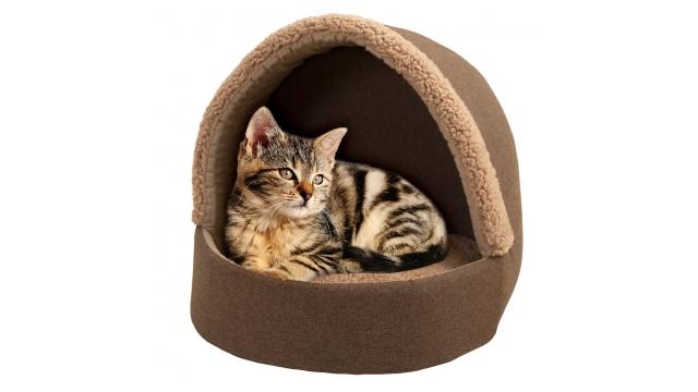 Hondenkussens-Kattenkussens.1